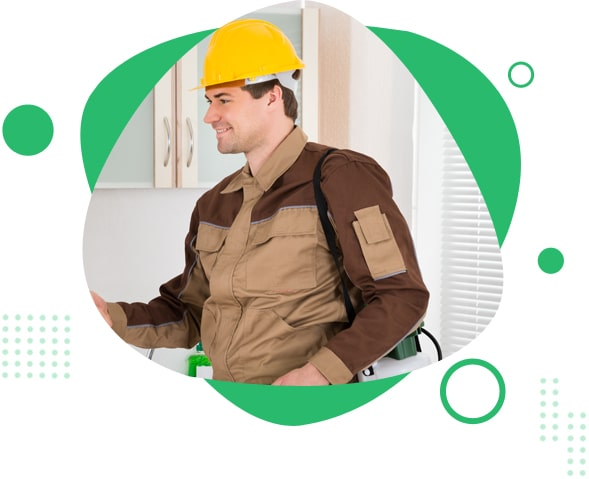 Get Economical Pest Control in Newcastle